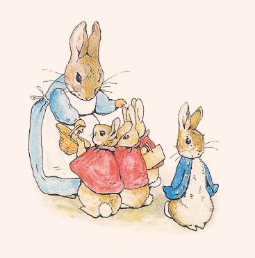 四只小兔子和妈妈住在沙坝上一棵巨大的杉树底下.